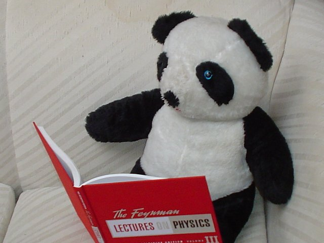 Panda reading Feynman, vol. 3