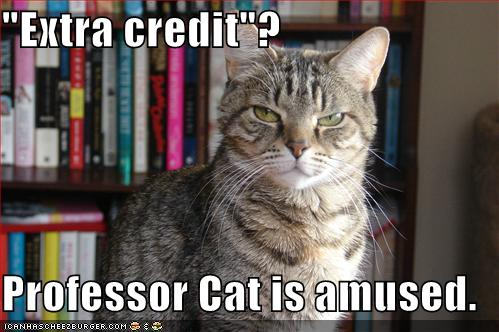 """Extra credit\""? Professor Cat is amused."